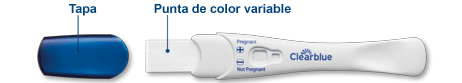 instrucciones clearblue plus test